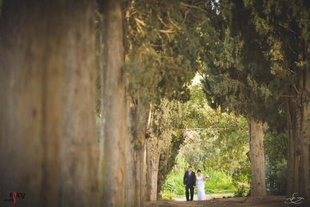 Bride and groom standing behind the trees