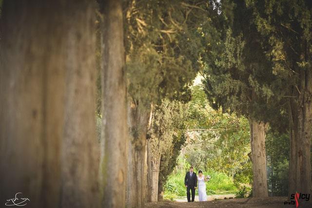 Classic Wedding Photography (2)